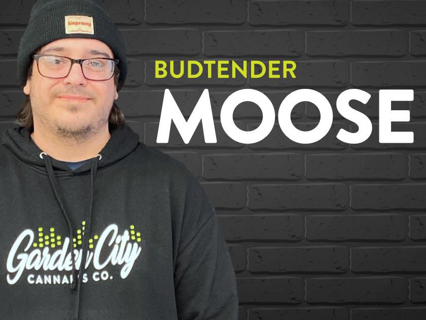 Moose the budtender