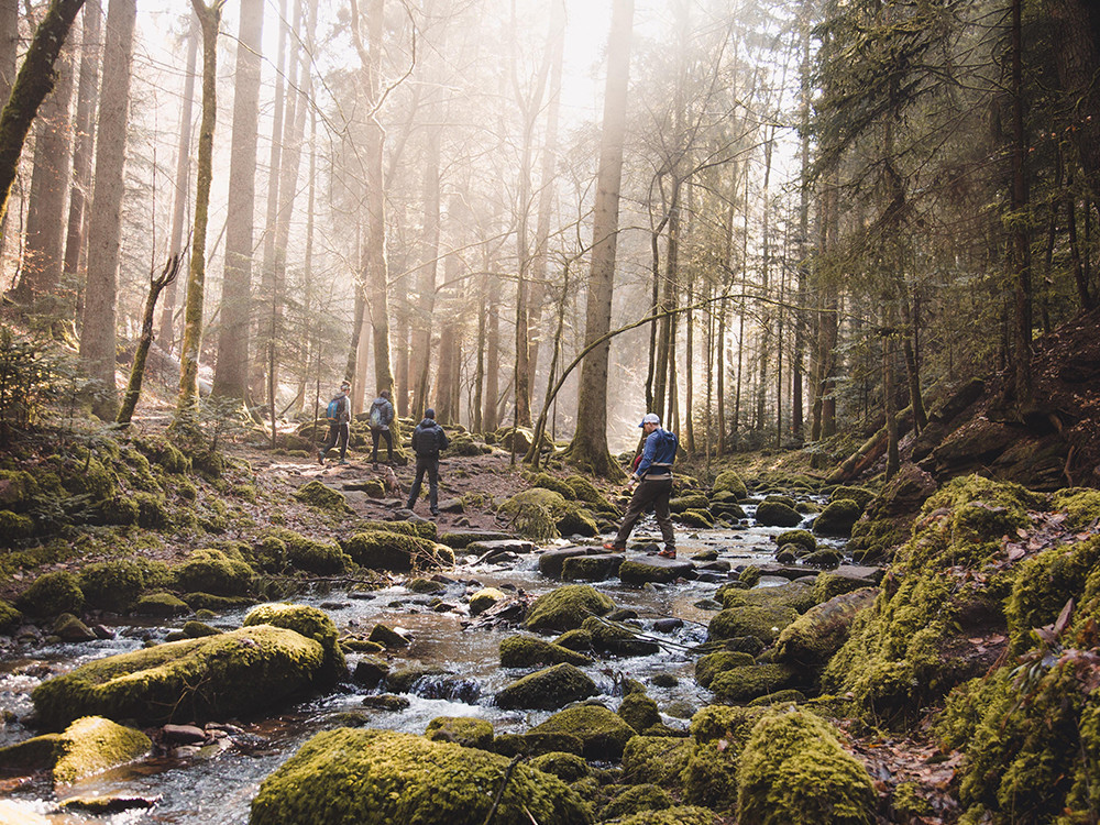 Several people hiking through a stream of water